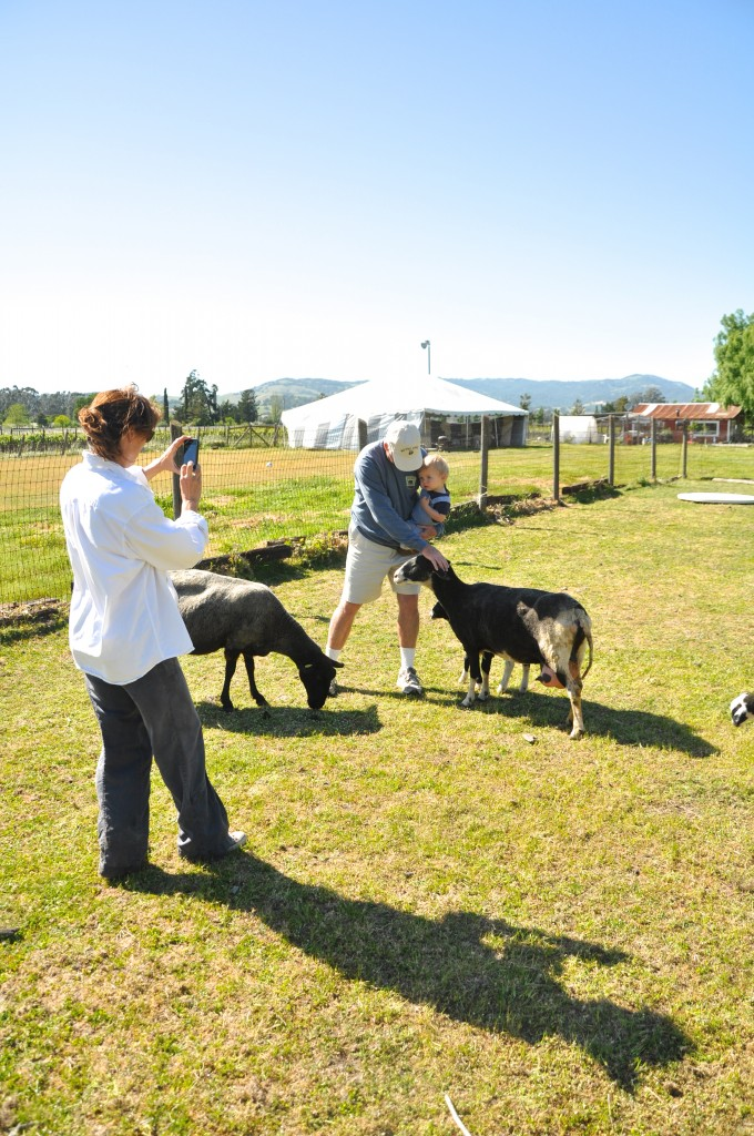 Farm Owner Cindy takes over photo duties.