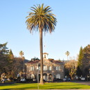 Literary Guide to Sonoma