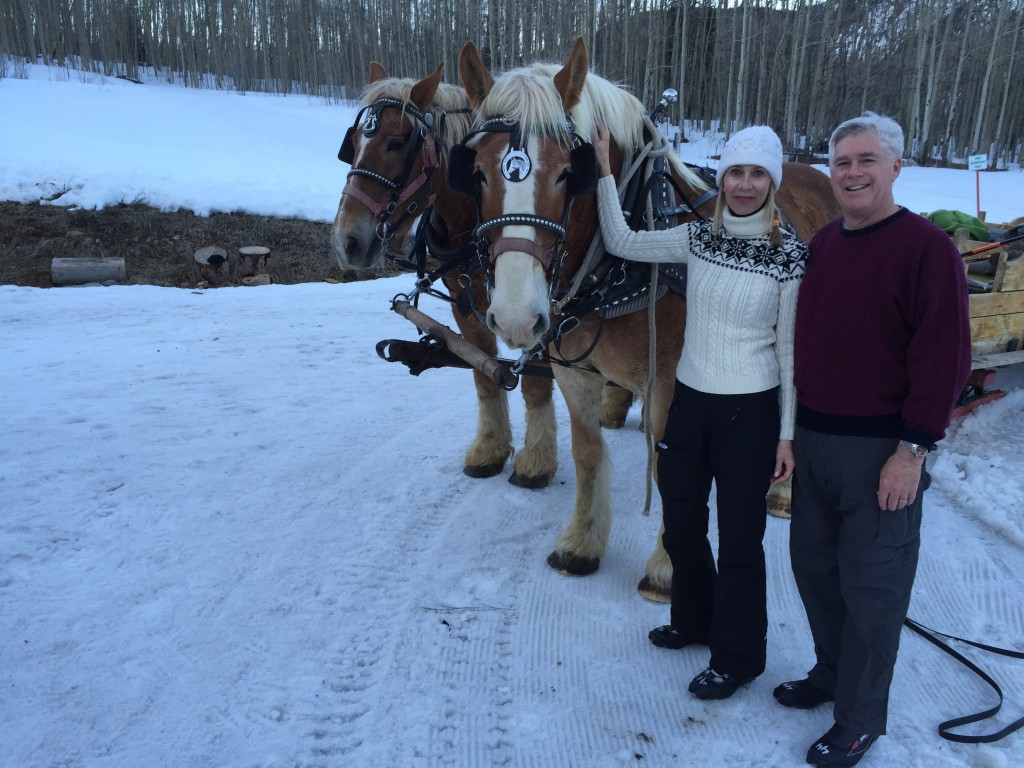 Two Belgian horses that gave us a ride home in a sleigh.