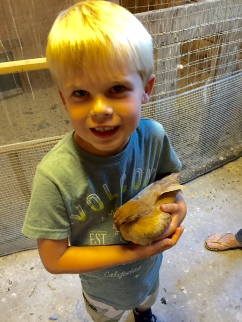 Grandson with our pet chicken