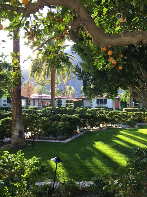 Avalon Palm Springs hotel, Palm Springs, Desert get-away, Trueheartgal