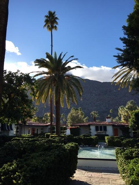 Avalon Palm Springs, Palm Springs, Desert get-away, senior travel, senior get-away, Trueheartgal